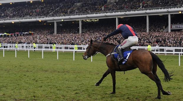 Barry Geraghty riding Bobs Worth during Cheltenham Gold Cup Day at Cheltenham racecourse on March 15, 2013