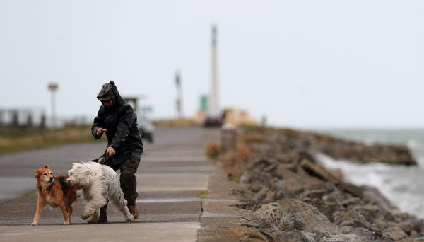 Eamonn O'Brien, from Clontarf, takes his dogs Daisy (left) and Jasper (right) for a walk along the Bull Wall in Dublin despite the poor weather conditions.