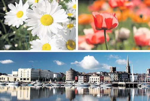 Clockwise from top: The World Flower Show comes to the RDS in Dublin in June; it's Waterford's 1,100th birthday.