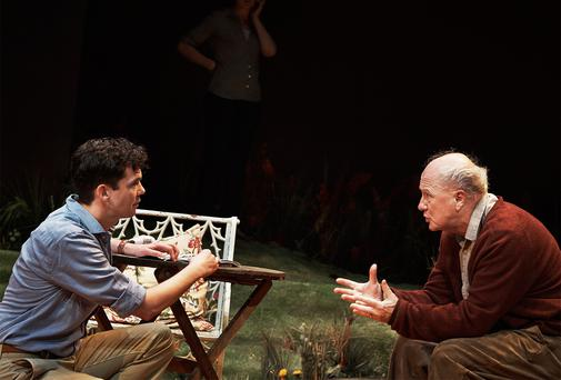 SCENE STEALERS: Marty Rae and, in particular Niall Buggy, right, put in tremendous performances in Frank McGuiness's 'The Hanging Gardens' at The Abbey Theatre