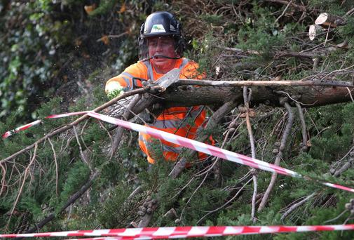 Brian McMahon of Total tree services cuts a branch which fell from a tree on Churchtown Road Lower.