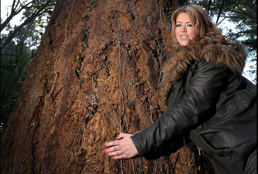 Reporter Emma Jane Hade with the Douglas Fir Tree standing at over 202 Ft Tall in Powerscourt Estate and Gardens.