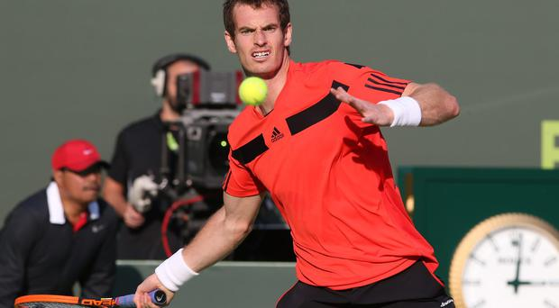 Andy Murray at the Qatar Open