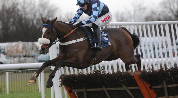 Diamond King ridden by Jason Maguire clears the final fence