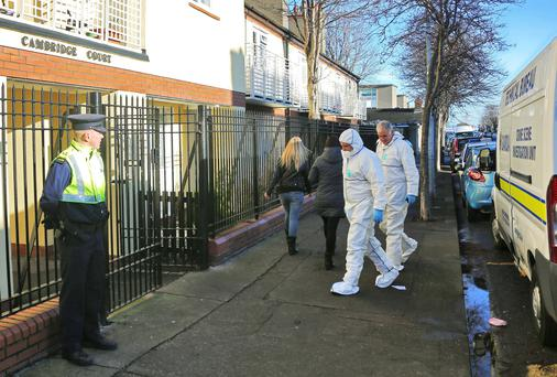 Gardai and forensic officers at the scene at Cambridge Court, Dublin.