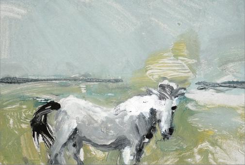 A Connemara Pony by David Lilburn