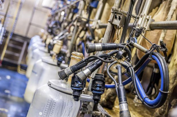 A massive surge in milk production since April means farmers could face a superlevy fine.