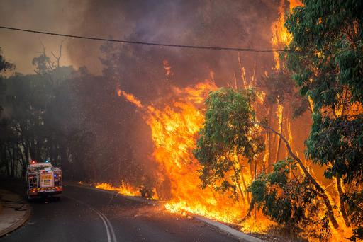 A wildfire burns trees and bushland along a roadside in Perth Hills in western Australia