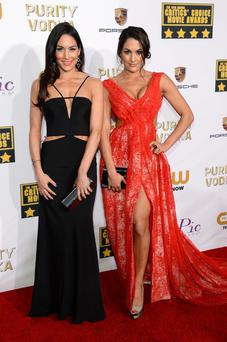 WWE divas Brie Bella (L) and Nikki Bella attend the 19th Annual Critics' Choice Movie Awards at Barker Hangar on January 16, 2014 in Santa Monica, California. (Photo by Ethan Miller/Getty Images)