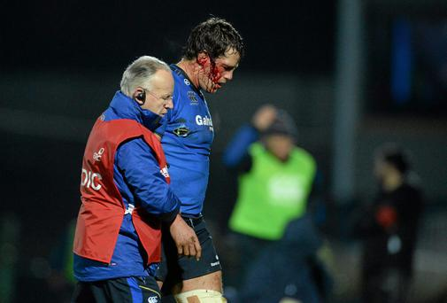 Leinster's Mike McCarthy leaves the field with a bad cut during the first half of the Heineken Cup clash with the Ospreys at RDS last night