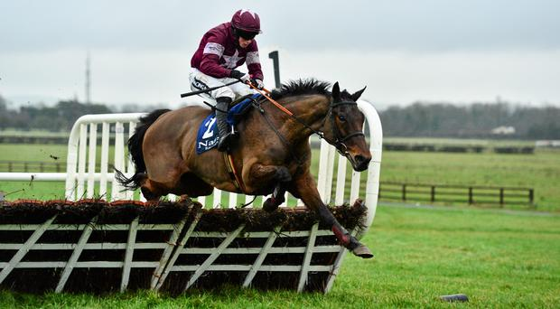 Rule The World, with Bryan Cooper up, clears the last on their way to winning the Limestone Lad Hurdle at Naas Racecourse