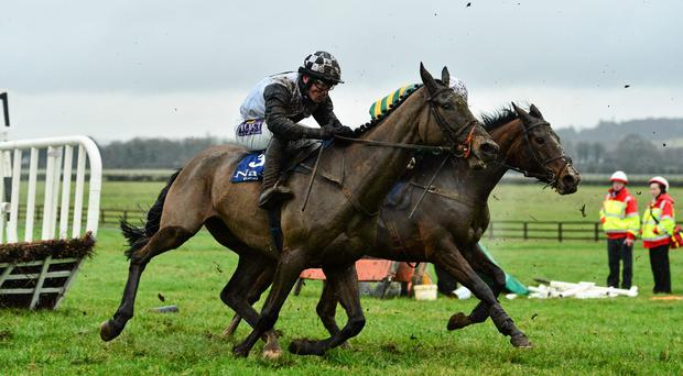 Dunguib, left, with Brian O'Connell up, who was racing for the first time in almost three years