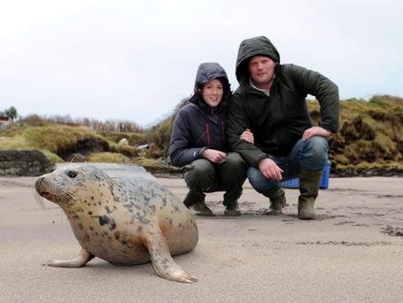 Ally McMillan and Ciaran O'Sullivan of the Dingle Wildlife and Seal Sanctuary release 'Lena' back into the ocean