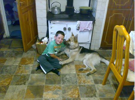 Dylan Lynch (10) was left distraught when his dog Ben was stolen from the family home in St Johnston, Co Donegal, a week ago.