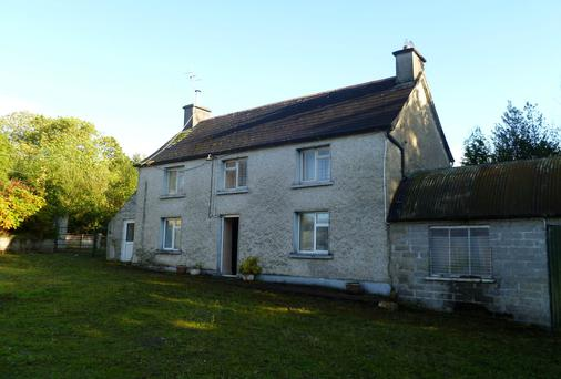 Needs work: Fronting on to a local road and on to the River Barrow just 3km from Borris, Co Carlow, this 28ac residential property is up for grabs for a guided price of €250,000.