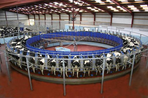 Milking equipment sold by Dairymaster