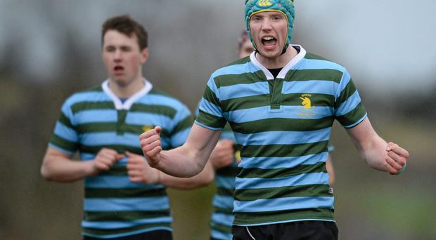 Michael O'Toole, St. Gerards School, celebrates his side's victory at the final whistle