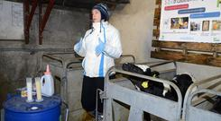 UCD Veterinary Department's Lea Krump speaking on colostrum management at a Teagasc-Volac calf rearing open day on the farm of John Walsh, Ahamonister, Timoleague Co Cork Picture Denis Boyle