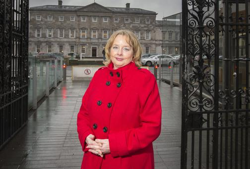 Nessa Childers pictured outside the Dail yesterday. Picture: Mark Condren