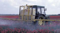 Pesticide must be registered for use on specific crops. Photo: Getty Images.