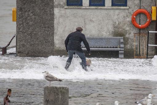 A father leaps to the rescue at Bulloch Harbour in South County Dublin after a sudden wave knocked over the young child. Photo: Aidan Tarbett