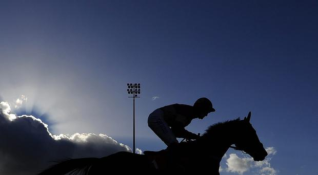 A runner passes the stands at Kempton Park racecourse