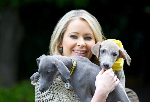 Sharon Ní Bheolain with lurcher pups Arthur and Eddie from the Dogs Trust