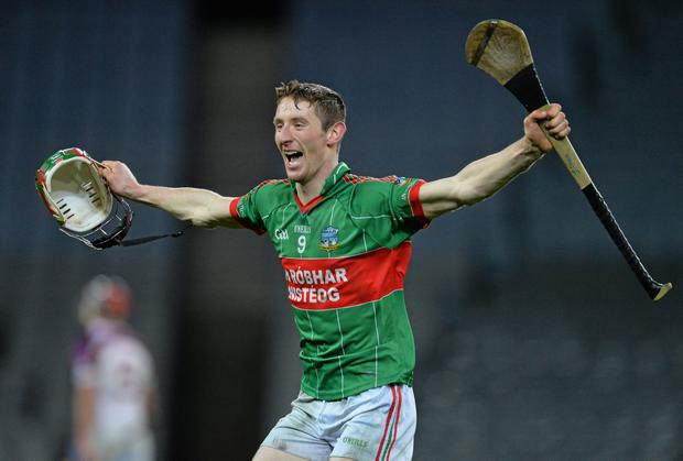 Joe Lyng, Rower Inistioge, celebrates at the end of the game