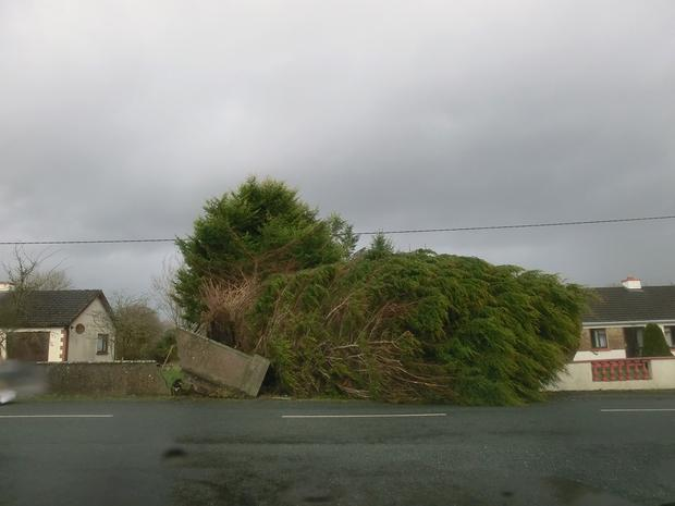 Storm damage in Kilbeacanty, Co. Galway. Sent in by Miguel Castro