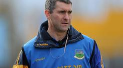 Liam Sheedy has been announced as the chair of the newly formed hurling review committee
