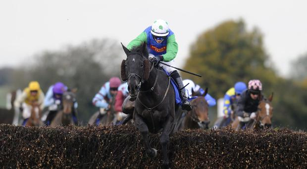 Conor O'Farrell riding Standing Ovation: still unproven on soft ground