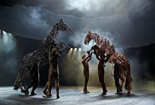 HORSE POWER: The play has been seen by four million people worldwide since 2007