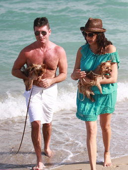 The new parents decided to bring Yorkshire terriers Squiddly and Diddly along with baby Eric to the beach.
