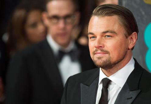 Ebuzzing Lab's experts believe DiCaprio should prepare a speech for 'Wolf of Wall Street'- and they are generally correct in their predictions. (Photo by Samir Hussein/WireImage)