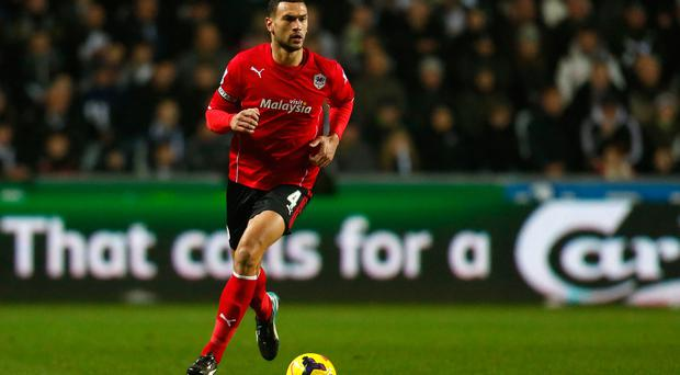 Steven Caulker is a reported target of Brendan Rodgers.