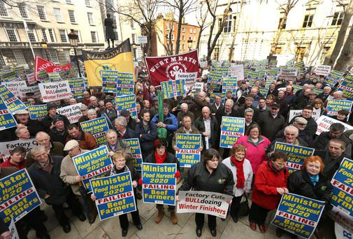 IFA Members led by IFA President Eddie Downey, protest outside the Department of Agriculture