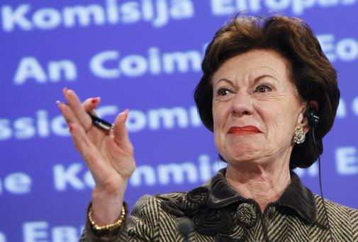 EU Commissioner for Competition Neelie Kroes. REUTERS/Thierry Roge