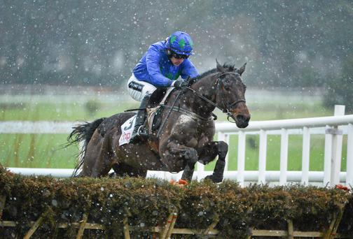 Hurricane Fly will lead the Irish charge on Tuesday as he and Ruby Walsh bid for a third Champion Hurdle