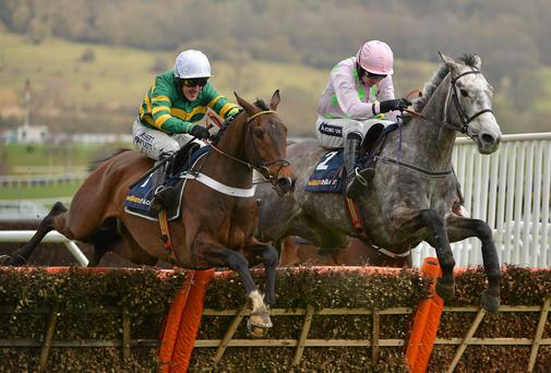 Tony McCoy and My Tent Or Yours, left, will be hoping for victory today