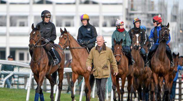 10 March 2014; The Willie Mullins string arrives at the Cheltenham gallops led by Hurricane Fly (left), with Ruby Walsh up, ahead of the opening day of the Festival which starts this afternoon