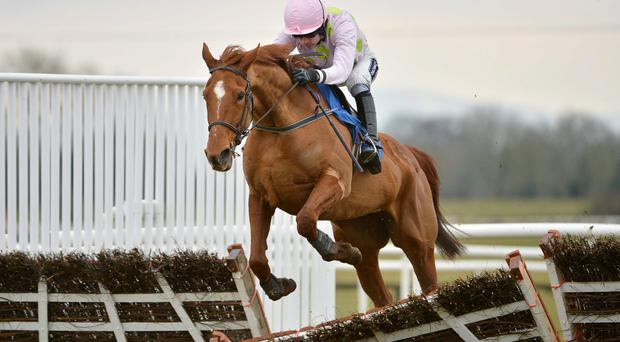 Ruby Walsh will be hoping to guide Annie Power to World Hurdle glory at Cheltenham today