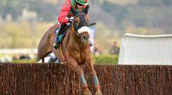 Benefficient and Bryan Cooper negotiate the final fence on the way to winning last year's Jewson Chase at Cheltenham
