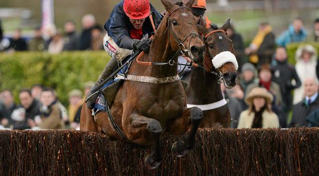 Bobs Worth and Barry Geraghty jump the last on the way to winning last year's Cheltenham Gold Cup Chase