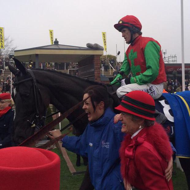 Taquin Du Seuil after winning the JLT Novices' Chase in 2014