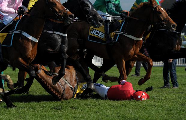 Abbyssial and jockey Ruby Walsh fall during the JCB Triumph Hurdle Race during Cheltenham Gold Cup Day at Cheltenham
