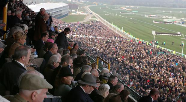 Racegoers watch from the stands on the final day of the Cheltenham Festival.