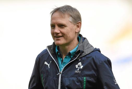 A great debut season for Ireland coach Joe Schmidt.