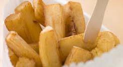 Festival will look for the world's best chip