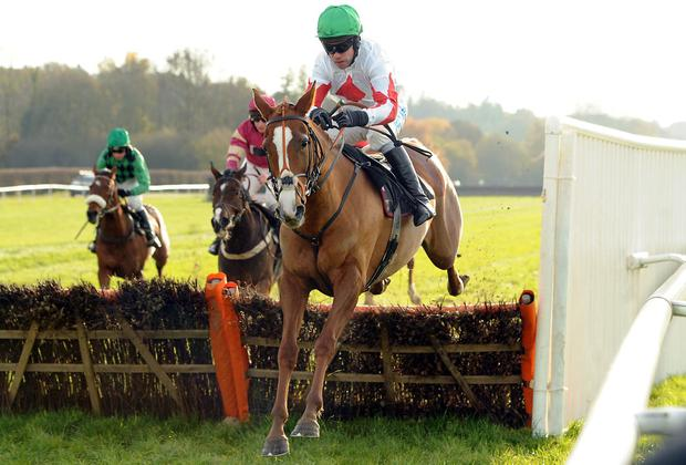 Down Ace, here winning at Lingfield under Timmy Murphy back in November, can show the way home in today's mares hurdle at Newbury