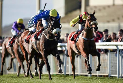 Stuccodor (left) with Pat Smullen up, gets the better of That's Plenty (Wayne Lordan) to claim yesterday's Lincoln Handicap at The Curragh